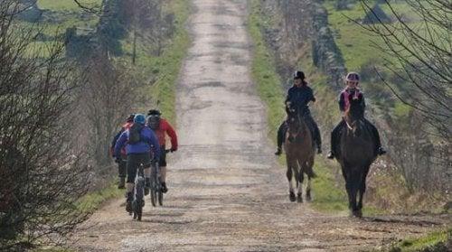 Det er ikke kun cyklister, der kan nyde ruterne