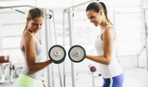 Kvinder løfter vægte for at opbygge muskelmasse