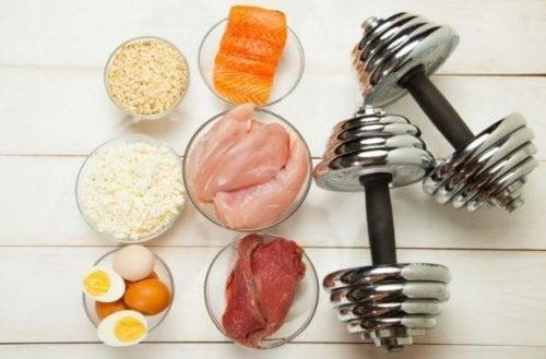 Fødevarer til at øge din muskelmasse