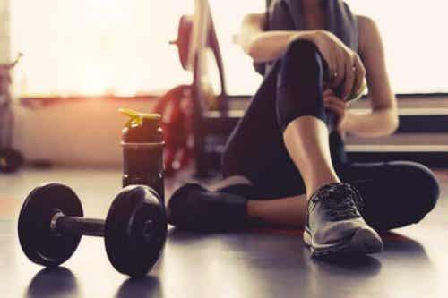 De 7 principper omkring træning, du bør kende til