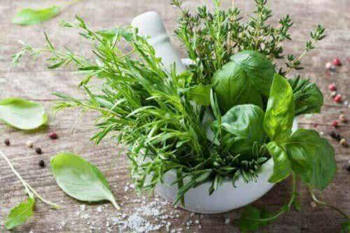 De helbredsmæssige fordele ved estragon