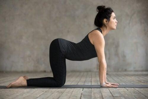 4 øvelser til at lindre smerter i den nedre del af ryggen