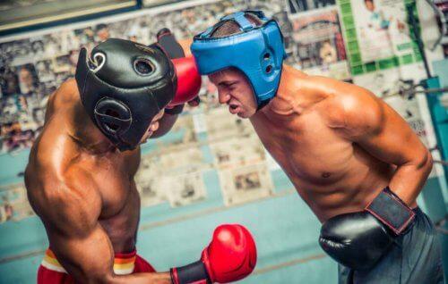 to mænd der bokser mod hinanden