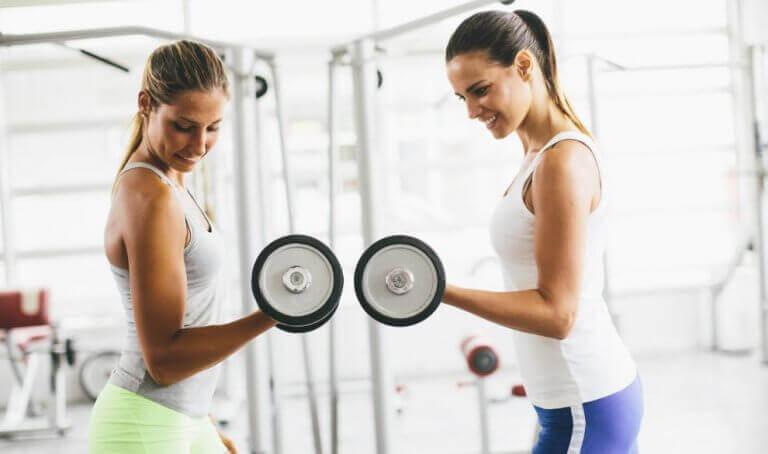 kvinder der træner med håndvægte