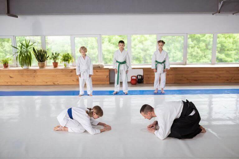 undervisning i kampsport