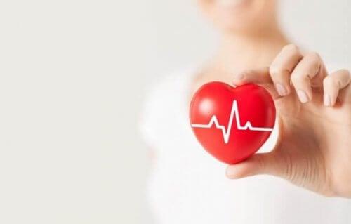 hjertefigur med hjertefrekvens i hånd