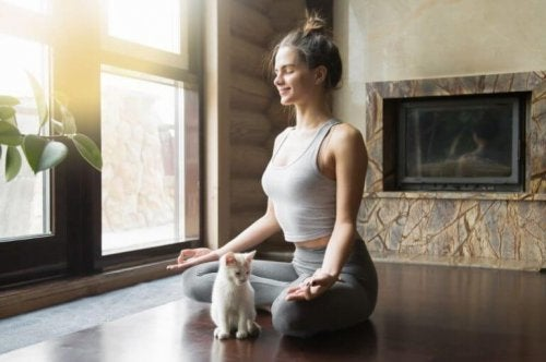 kvinde der dyrker yoga med kat