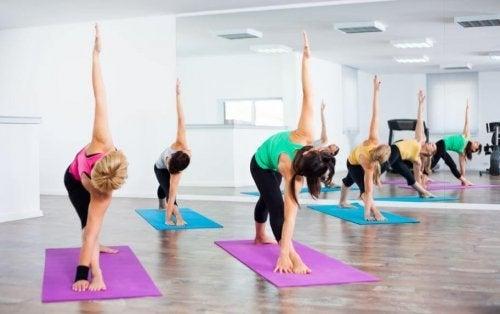 kvinder der dyrker yoga