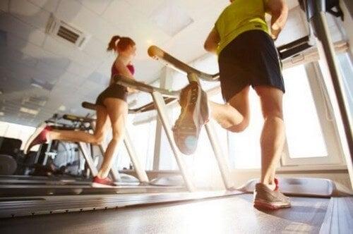 Sæt gang i dit stofskifte og forbrænd kalorier på et løbebånd