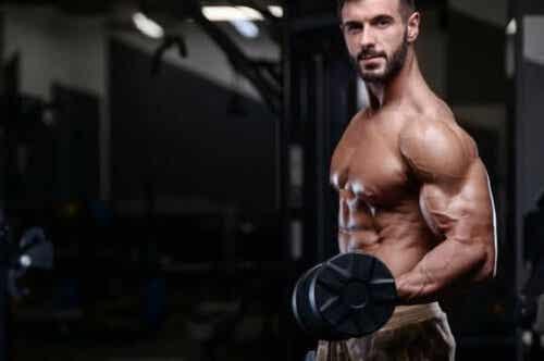 Få større muskler for at generere mere styrke