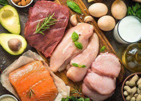 forskellige proteinholdige fødevarer