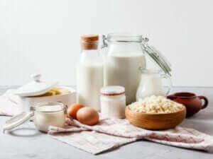 udvalg af mælkeprodukter og æg