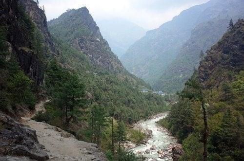 De 7 bedste floder i hele verden til rafting