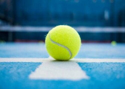 6 forskelle mellem padel tennis og tennis
