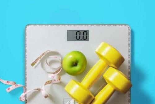 7 tips til at tabe fedt og ikke muskelmasse
