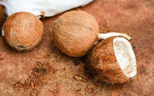 Kokosnødders fordele for vores helbred