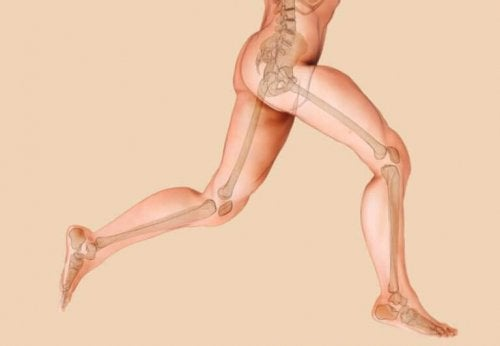 Knochenprobleme