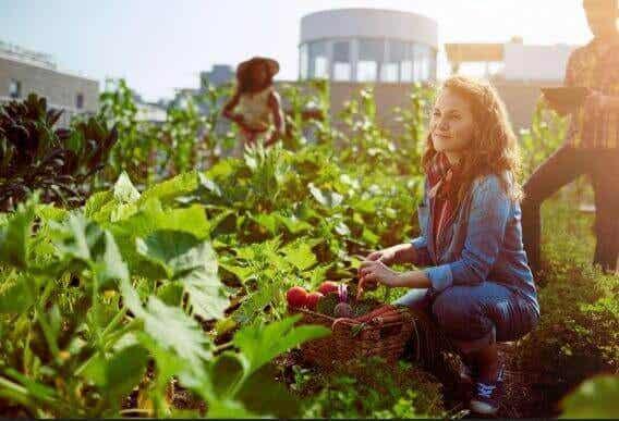 Gesunde, saisonale Lebensmittel: Monat für Monat
