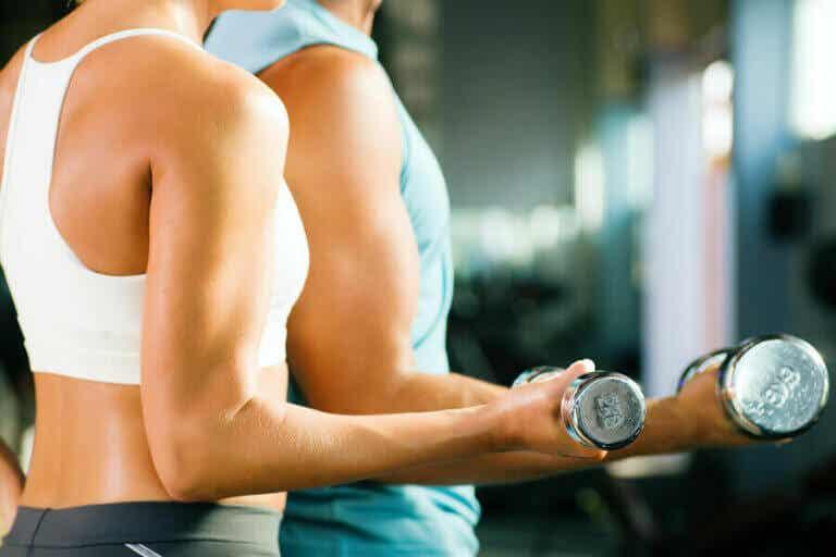 Unterarme kräftigen: Übungen für zuhause