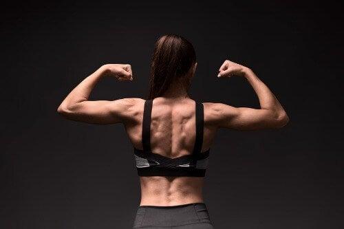 Rautenmuskeln: Anatomie und spezifisches Training