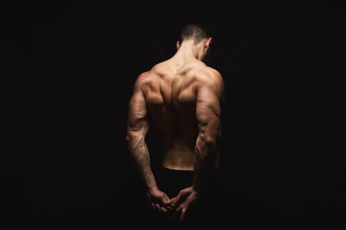 Trapezmuskel: Anatomie und spezielle Übungen