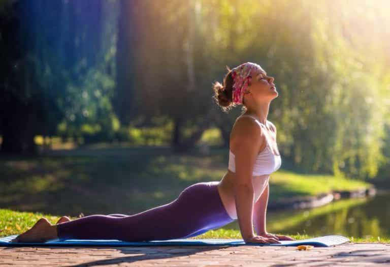 Bénéfices de la posture chien tête en haut en Yoga
