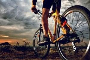 Tout ce qu'un cycliste doit savoir