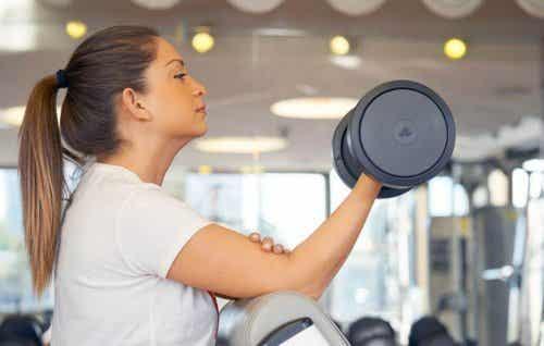 Exercices d'haltères pour travailler les biceps