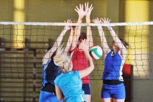 Découvrez les meilleurs sports d'équipe