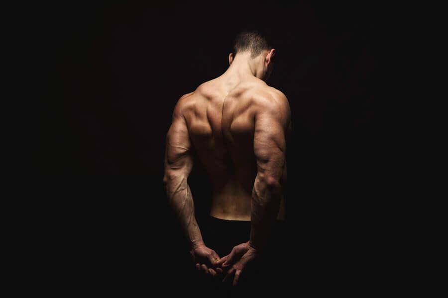 Trapèzes : anatomie et exercices pour les renforcer et les étirer