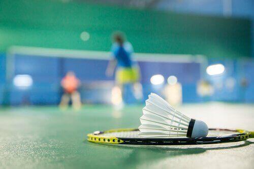Raquette et volant de badminton sur le terrain