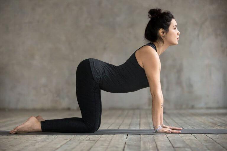 4 exercices pour soulager la douleur lombaire