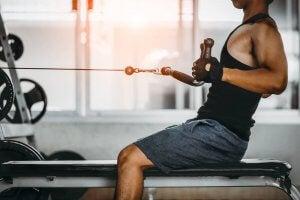 Le rameur à poulie basse est excellent pour travailler les muscles du dos.