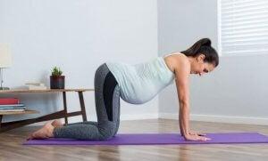 Femme enceinte qui fait des exercices au sol.