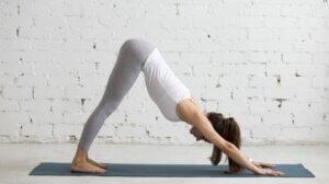 Une femme qui fait la posture de yoga du chien à l'envers.