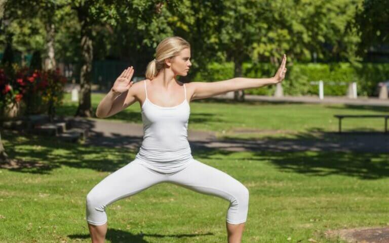 Connexion entre les arts martiaux et le yoga