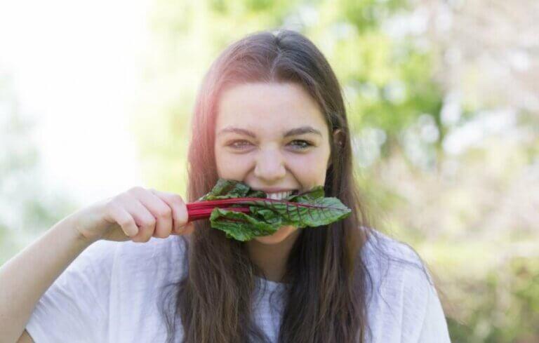Aliments riches en fer d'origine animale et végétale
