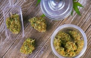 Des feuilles de cannabis.