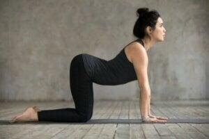Posture de yoga de la vache contre les douleurs dorsales.