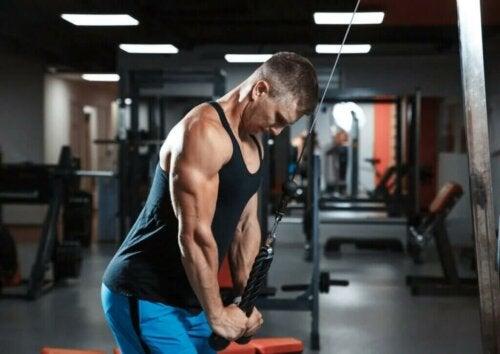 5 conseils pour renforcer vos triceps