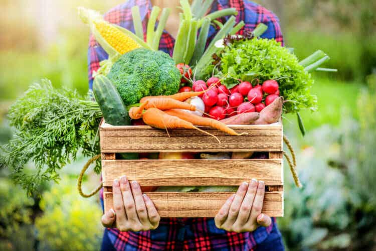 3 bienfaits des fruits et légumes