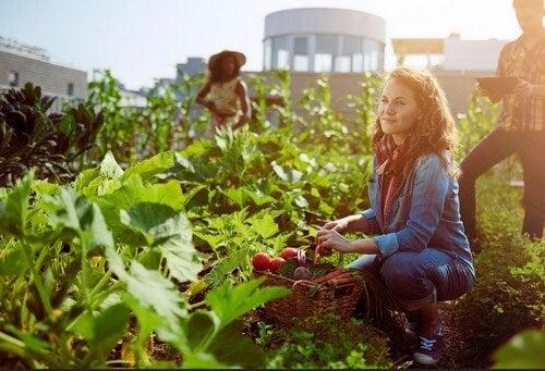 Frutta e verdura di stagione per preservare la salute
