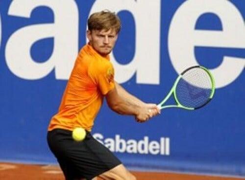 David Goffin, un giocatore di tennis molto completo