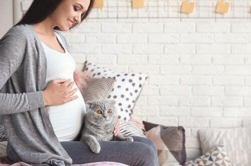 Come si contrae la toxoplasmosi in gravidanza?