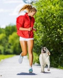 andare a correre con il cane