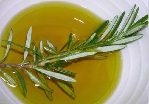Rosmarino con olio in un piatto