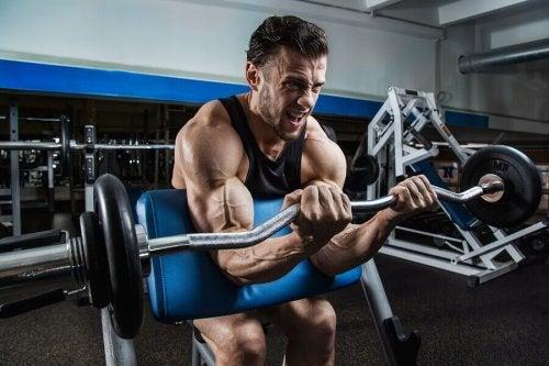 Bicipiti: 3 esercizi da includere assolutamente nella vostra routine