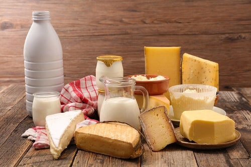 Tutto quello che bisogna sapere sui latticini