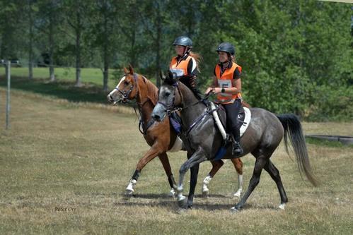 Sport equestri: due ragazze fanno enduro