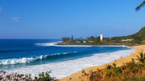 Le migliori spiagge del mondo per fare surf